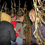 10/17/09 Novotny Farm Market Rt 60 Vermilion, Ohio Holowen Corn Maze. Surprise. Photo by Tom  Mahl