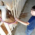 Alex Enderby, 5, of Elyria, pets a pony in the pony barn at Lorain County Fair on Aug.21.  Steve Manheim
