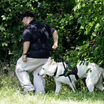 An investigator and his  dog search a wooded area Sunday, July 21, 2013 near where three bodies were recently found in East Cleveland, Ohio. Searchers rummaging through vacant houses in a ne …