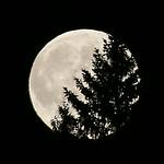 Austria Super Moon