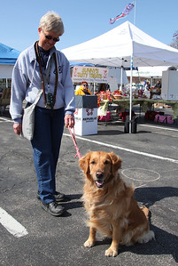 """Maureen Heuler of Avon Lake and her lovable 2.5 yr old Golden Retriever """"Kayla"""" at the Love-a-Stray Dog Walk. Kayla is high energy, but obeys commands well. Maureen is training her to one day work as a therapy dog for people at Arden Courts. photo by Ray Riedel"""