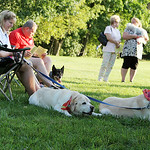 Pet owners sit with their pets during the second annual Blessing of the Pets at Fields United Methodist Church in North Ridgeville Sunday evening. ANNA NORRIS/CHRONICLE