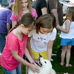 Morgan, 10, and Laura Freeman, 9, of North Ridgeville, and Emily DeRonde, 8, of Avon, play with Evie the samoyed dog during Meet the Breeds at the Avon Public Library on Aug. 16. KRISTIN BAU …