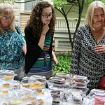 Mary Peters, Elizabeth Endrizzi and Michelle Cook scan a table full of pies and cakes to choose from to top with ice cream. ANNA NORRIS/CHRONICLE