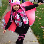 Amira, 4, is a colorful owl.