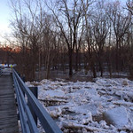 Stephanie Elisabeth Buza took this photo at Mill Hollow on Feb. 21.
