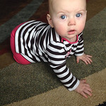"""""""I am thankful for my daughter, Emily, 7 months."""" -Dawn Bristor Freas"""