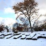 The first snow of the season covers the Elyria Sunrise rotary garden at Gateway Boulevard park on Nov. 12. Steve Manheim/Chronicle