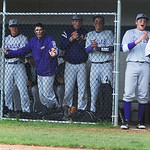 Avon cheers on batters as they face Bay Village. KRISTIN BAUER | CHRONICLE