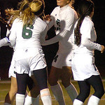 Elyria Catholic celebrates a goal against Wellington Thursday night. LINDA MURPHY/CHRONICLE