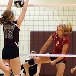 Brookside Shelby Kerstetter slams past Wellington Jill Jackson Oct. 11.   Steve Manheim