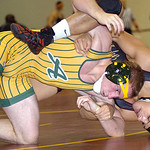 Amherst's Austin Williams wrestles Avon Lake's Tyler Mayer. Williams won the match. LINDA MURPHY/CHRONICLE