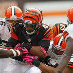 Cincinnati Bengals running back BenJarvus Green-Ellis (42) runs the ball against the Cleveland Browns during an NFL football game Sunday, Oct. 14, 2012, in Cleveland. (AP Photo/Tony Dejak)