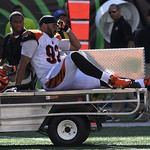 Cincinnati Bengals defensive end Jamaal Anderson is taken off the field after being injured in an NFL football game against the Cleveland Browns, Sunday, Sept. 16, 2012, in Cincinnati. (AP P …