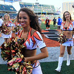 Cincinnati Bengals cheerleaders leave the field after an NFL football game against the Cleveland Browns, Sunday, Sept. 16, 2012, in Cincinnati. (AP Photo/David Kohl)