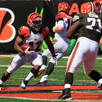 Cincinnati Bengals running back BenJarvus Green-Ellis in action against the Cleveland Browns in the second half of an NFL football game, Sunday, Sept. 16, 2012, in Cincinnati. (AP Photo/Davi …